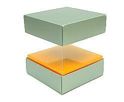 Skylinebox L100xW100xH100mm exterior Monaco Silver-orange