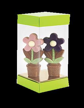 Chocolatebox Skyline